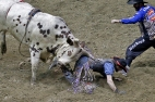 Derek Brumitt is pinned to the ground by bull, I'm Nuts, while competing in the Pro Bull Riders Blue DEF Velocity Tour at the Hampton Coliseum Saturday evening. (Jonathon Gruenke/Daily Press)