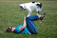 """Echo,"" a three-year-old miniature Australian Shepherd, practices some agility with owner and trainer, Katie Baker of Christiansburg who started her own business, ""the K9Mind"" after working as a trainer at Pet Smart. They had competed in the weekend Star City K-9 Agility event and were hanging out in the grass at Green Hill Park on Sunday. Baker said Echo did well in competition until she ran out of the ring in the last event. (Stephanie Klein-Davis/The Roanoke Times)"
