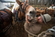 Mark Stark tends to his horse as he prepares them to haul canons down to the battlefield for a demonstration during the sesquicentennial at the Appomattox Court House National Historical Park in Appomattox, Va. on April 10, 2015.