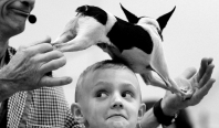 --Feature 3rd Place: Rob Ostermaier/Daily Press--Henry Baum wears a dog on his head during the Johnny Peers' Muttvile Comix show at the Pets Expo in Hampton, Virginia. (Rob Ostermaier/Daily Press)