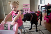 --Lifestyle 1st Place: L. Todd Spencer/The VIrginian-Pilot--Three year old Layla Sawicki inside her home in Virginia Beach, Virginia, along with Nasyah her service dog who is trained to spot seizures in Layla.