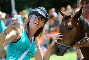 Stacey Gatrell takes a selfie with the Chincoteague Pony she won during the 90th annual Chincoteague Pony Auction on Thursday, July 30, 2015. A portion of the wild pony herd is auctioned off to benefit the Chincoteague Volunteer Fire Company, which owns and maintains the herd.