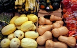 A variety of squashes in the produce section of Aldi grocery store on Thursday. The grocery store takes pride in having fresh produce.