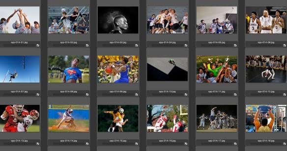 1st Sports Portfolio