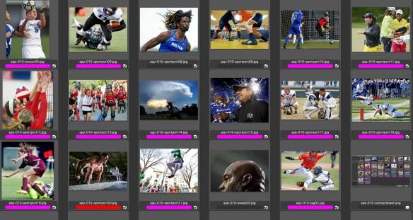 2nd Sports Portfolio