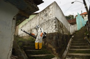 A worker fumigates the Guabiraba neighborhood for mosquitos on Wednesday March 16, 2016 in Recife, Brazil. The Zika virus has been rampant in this region. The virus is spread by the Aedes aegypti mosquito. The climate of northeast Brazil and improper sanitary conditions are possible reasons why the area has been the heart of the epidemic.