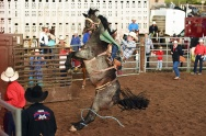 Garrett Buckley competes in the Saddle Bronc Riding competition at the Snowmass Rodeo on Wednesday July 19, 2017 in Snowmass Village, CO. Buckley got another ride after this first ride ended quickly as the horse he was riding went straight up and over after coming out of the gate. This is the 44th year for the weekly rodeo that runs from mid-June through August.