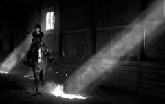 3rd Place Feature: William Douglas Graham, Loudoun Now---Welcoming back the sunshine as shafts of light beam into an indoor riding arena as an equestrian hacks her horse after what seemed like weeks of rain.